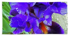 Irises 12 Hand Towel
