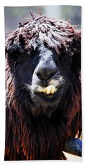 Bath Towel featuring the photograph Is Your Mama A Llama? by Anthony Jones