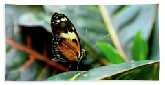 Ismenius Tiger Butterfly-2 Bath Towel