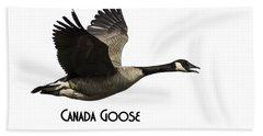 Isolated Canada Goose 2015-1 Bath Towel