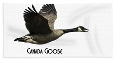 Isolated Canada Goose 2015-1 Hand Towel