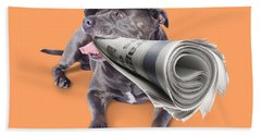 Isolated Newspaper Dog Carrying Latest News Hand Towel