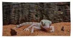 Bath Towel featuring the photograph Israeli Sand Gecko - 1 by Nikolyn McDonald