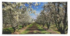 Hand Towel featuring the photograph It's A New Day by Laurie Search