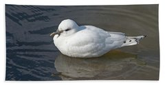 Ivory Gull Bath Towel