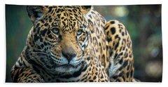 Hand Towel featuring the photograph Jaguar by Lisa L Silva