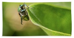 Japanese Beetle On Milkweed Hand Towel