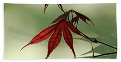 Japanese Maple Leaf Hand Towel by Ann Lauwers
