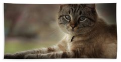 Hand Towel featuring the photograph Jaspurr by Kim Henderson
