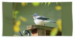 Scrub Jay On A Fence - Images From The Fall Garden Bath Towel