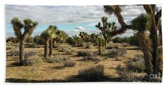 Joshua Tree's Bath Towel