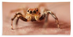 Jumping Spider Hand Towel