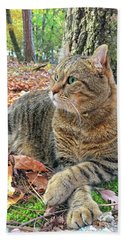 Just Chillin' In The Woods Hand Towel by Susan Leggett