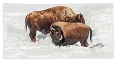 Juvenile Bison With Adult Bison Bath Towel