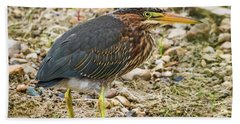 Hand Towel featuring the photograph Juvenile Green Heron by Ricky L Jones