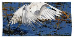 Juvenile Little Blue Heron Bath Towel