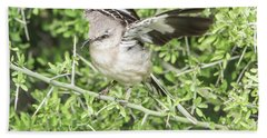 Juvenile Mockingbird With Crossbill Hand Towel