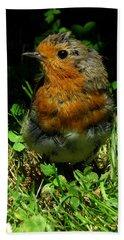 Juvenile Robin Hand Towel
