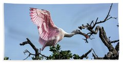 Juvenile Roseate Spoonbill Readying Its Wings Bath Towel