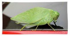 Bath Towel featuring the photograph Katydids- Bush Crickets by Ricky L Jones