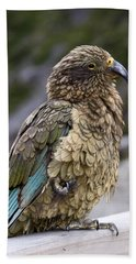 Bath Towel featuring the photograph Kea Bird by Sally Weigand