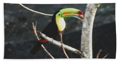 Keel-billed Toucan Bath Towel