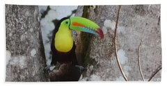 Keel-billed Toucan #2 Bath Towel