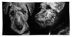 Hand Towel featuring the drawing Keeper The Welsh Terrier by Peter Piatt