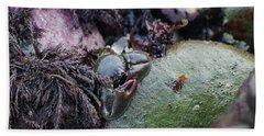 Kelp Crab Hand Towel