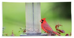 Bath Towel featuring the photograph Kentucky Cardinal  by Ricky L Jones