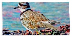 Killdeer  Hand Towel by Ken Everett