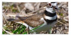 Killdeer Mother Hand Towel