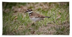 Killdeer Bath Towel