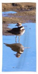 Killdeer Reflection Hand Towel by Karen Silvestri