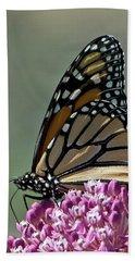 King Of The Butterflies Hand Towel by Stephen Flint