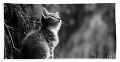 Kitten In The Tree Bath Towel