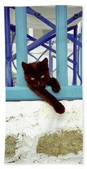 Kitten With Blue Rail Hand Towel