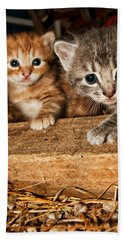 Kittens Hand Towel