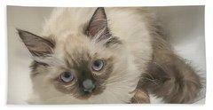 Kitty Blue Eyes Hand Towel