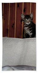 Hand Towel featuring the photograph Kitty by Laura Melis