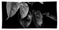 Kiwi Leaves In Black And White Bath Towel