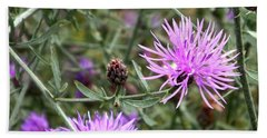 Hand Towel featuring the photograph Knapweed by Danielle R T Haney