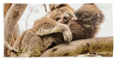 Koala 5 Bath Towel by Werner Padarin