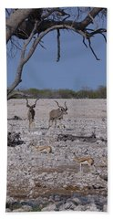 Hand Towel featuring the photograph Kudu And Springbok 2 by Ernie Echols