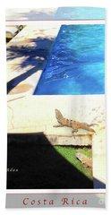 la Casita Playa Hermosa Puntarenas Costa Rica - Iguanas Poolside Greeting Card Poster Bath Towel by Felipe Adan Lerma