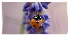 Ladybird On Norfolk Lavender  #norfolk Hand Towel