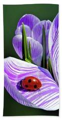 Ladybug On A Spring Crocus Bath Towel