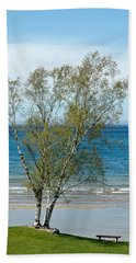 Hand Towel featuring the photograph Lake Michigan Birch Tree by LeeAnn McLaneGoetz McLaneGoetzStudioLLCcom