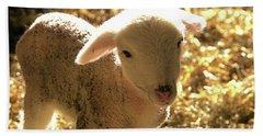 Lamb All Aglow Hand Towel