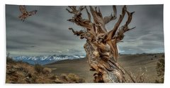 Landing On Bristlecone Pine Bath Towel